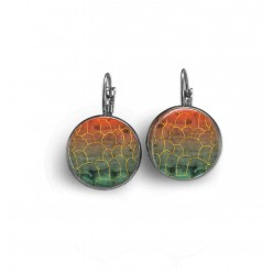 Sleepers fall Geode earrings
