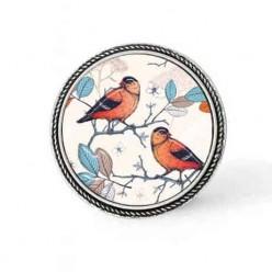 Bouton - cabochon en forme de Cadre en 30mm pour collier interchangeable : thème oiseaux massala et turquoise