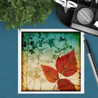 Square gift card featuring an Herbarium autumn leaves theme