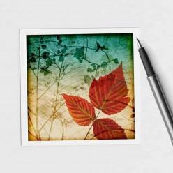 Square gift card featuring an Herbarium autumn leaves theme