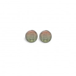 Stud earrings with a Winter's pond theme