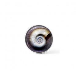 Cabochon à bouton-pression pour bijoux interchangeables avec une image de coquille fossile sur fond mauve