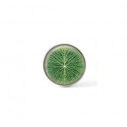 Clip-on snap button for  interchangeable jewelry : giant lotus leaf in green