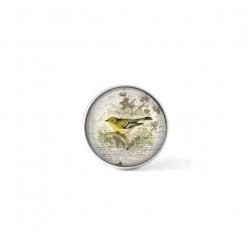 Bouton cabochon clipsable pour bijoux interchangeables : oiseau verdier vintage